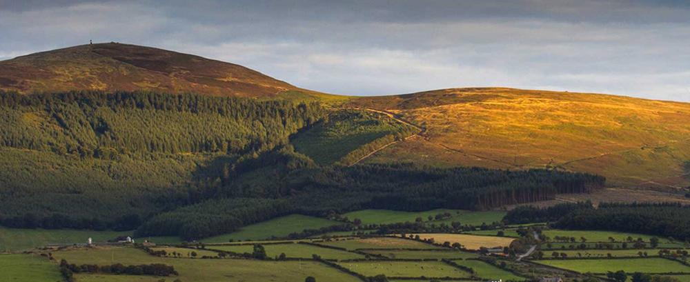 Brandon Hill View Kilkenny