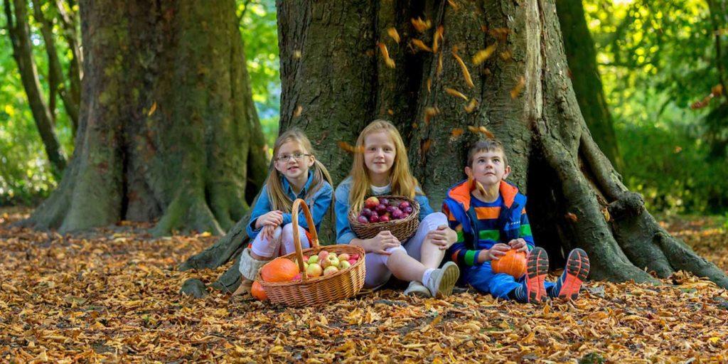 Kilkenny Autumn