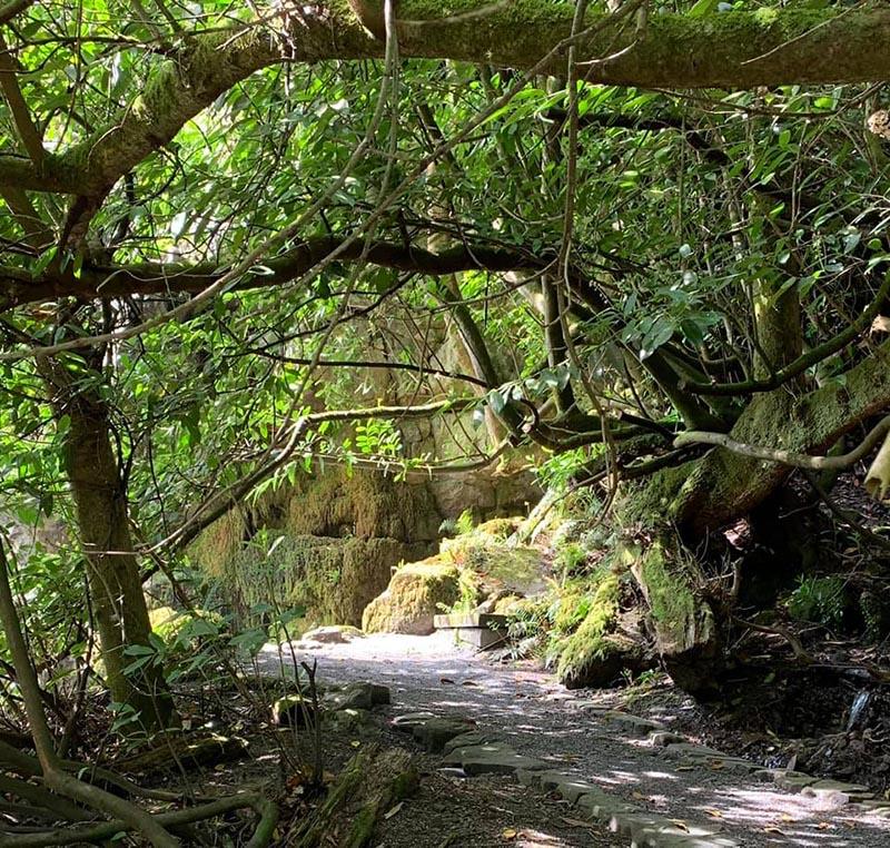 Outdoor Kilkenny Kilfane Glen Waterfall 03