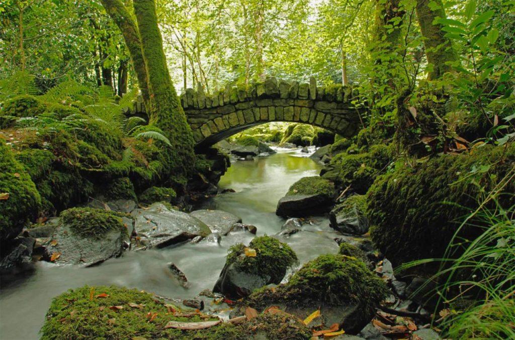Outdoor Kilkenny Kilfane Glen Waterfall 06