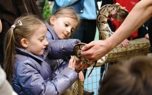 Outdoor Kilkenny Reptile Zoo 02