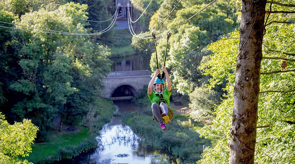 Zipline At Castlecomer Discovery Park