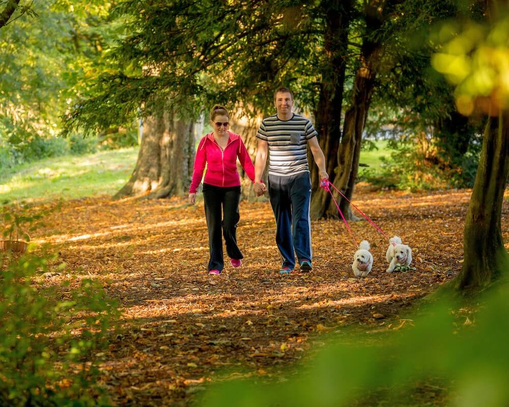 Top Walking Trails In Kilkenny